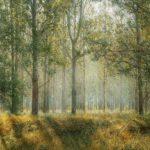 Ausschlussfrist bei Wildschaden auf landwirtschaftlich genutzten Flächen